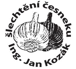 Šlechtění česneku - Ing. Jan Kozák
